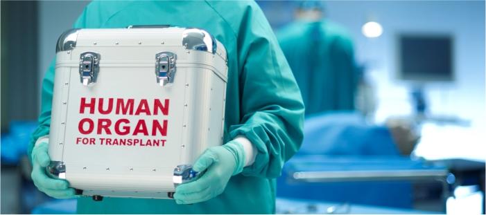 arrisalahnet Fikih Kontemporer- Hukum Mendonorkan Organ Tubuh
